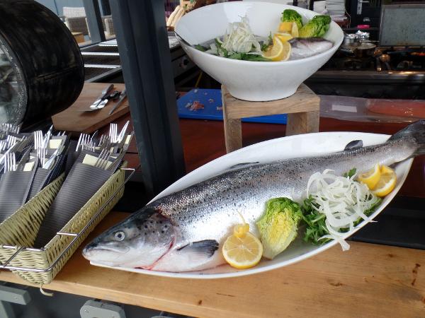 frischer Fisch im Nederzandt