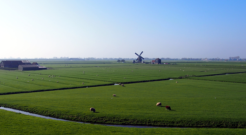 Laag Holland
