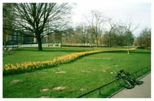 der blühende Westerpark