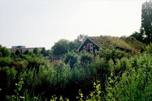 Bauernhof auf dem Gebiet der Westergasfabriek in Amsterdam