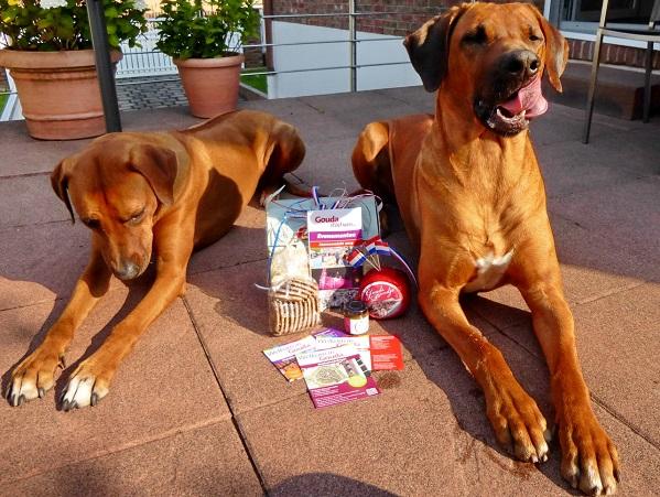 Martinas Hunden läuft schon das Wasser im Mund zusammen... sie möchten auch gern kosten