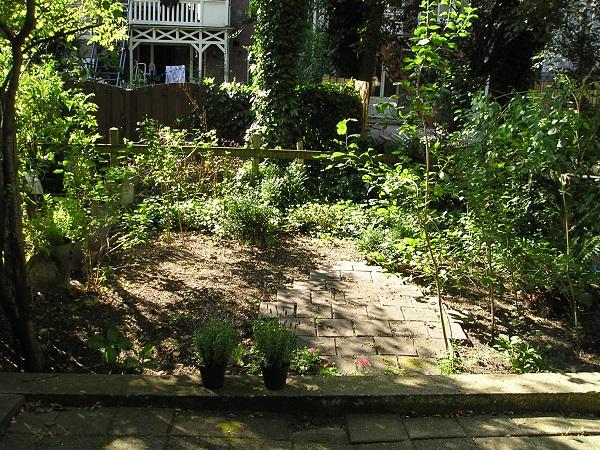 ein typischer Garten in Amsterdam