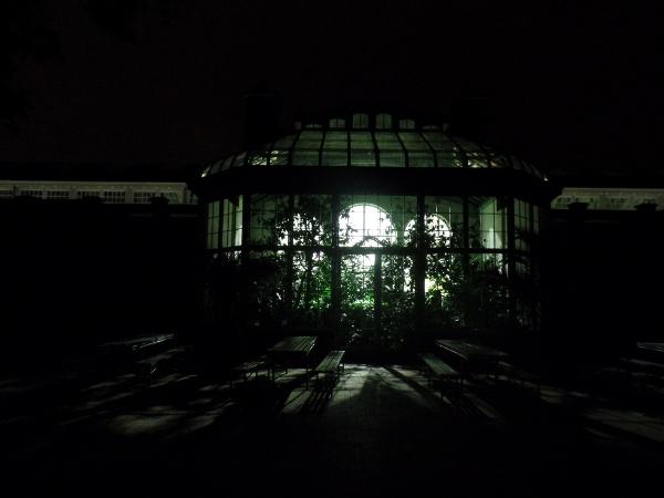 das Tropenhaus bei Nacht im Artis Royal Zoo in Amsterdam