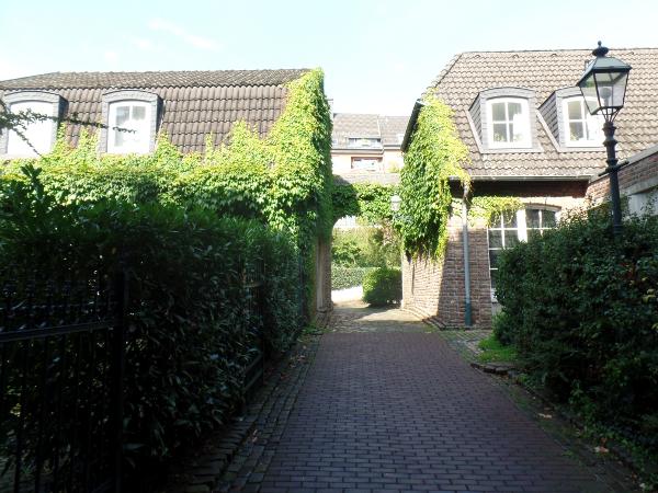 grüner Hinterhof in Aachen