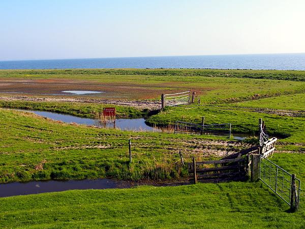 Blick zum Ijsselmeer