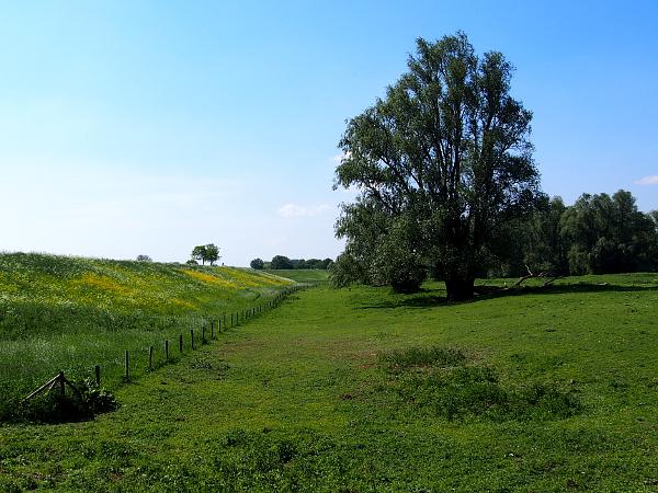 Erfgoedfestival 2018: am Waal-Deich von Beuningen