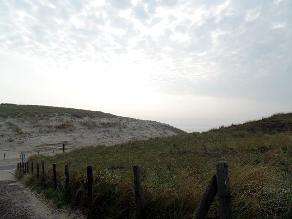 Landgoed Duin & Kruidberg: Nationalpark Dünen