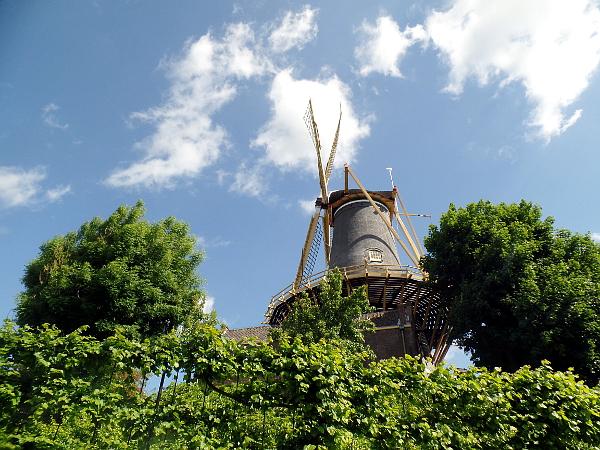 Getreidemühle De Windhond in Woerden