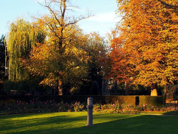 Goldener Herbst in Hengelo