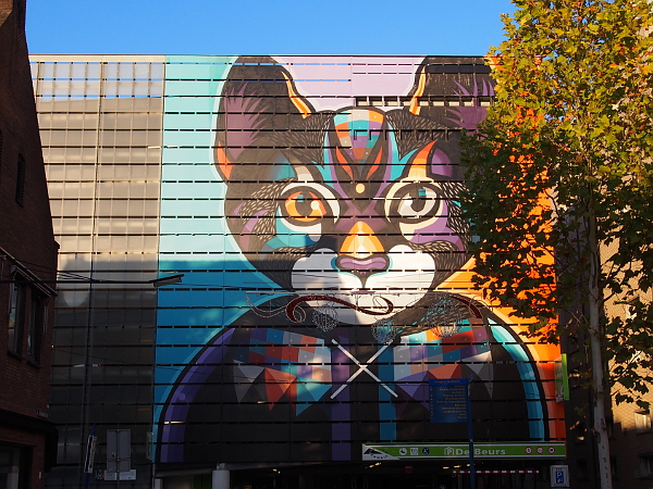 Streetart in Hengelo - Katze